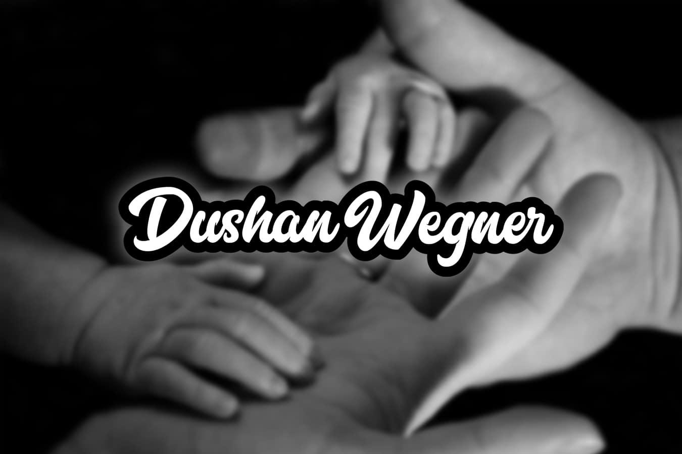 dushanwegner.com